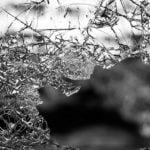 Videosurveillance pour protéger les entreprises contre le vol