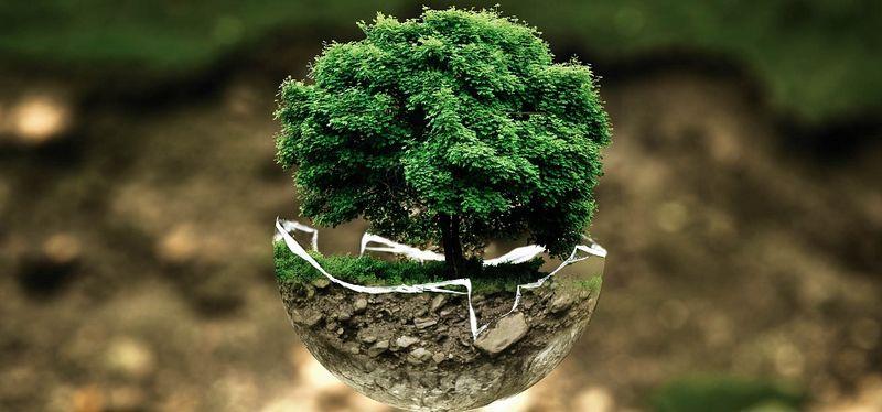 business school environnement